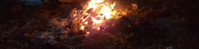 """Gibt es einen Zusammenhang zwischen dem """"Burn-out""""-Phänomenen und der Hochsensibilität?"""