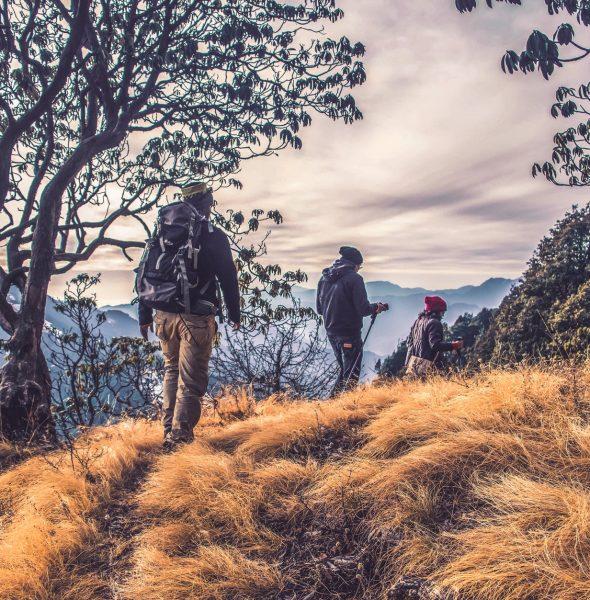 """Selbstfindungs-Reise: Wanderung """"Dein Weg in ein gesundes Leben"""""""