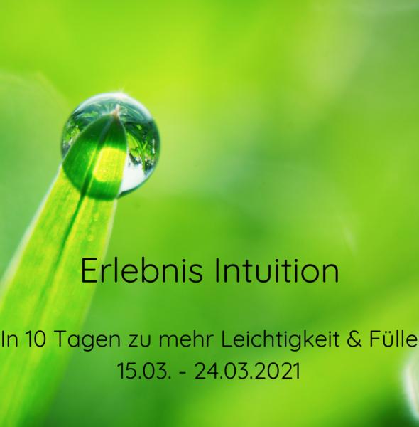 Erlebnis Intuition