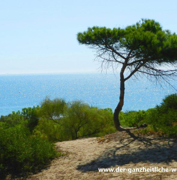 Achtsamkeit und Entspannung in Meeresatmosphäre