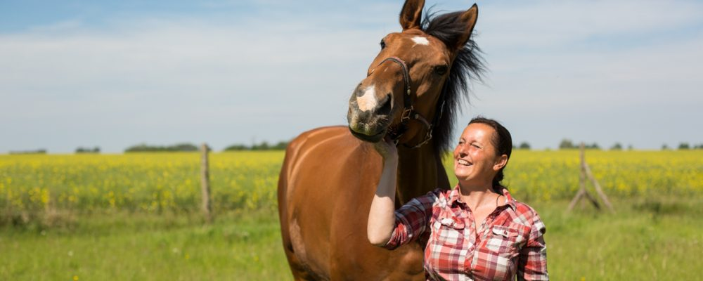 Pferde sind die Spiegel der Seele