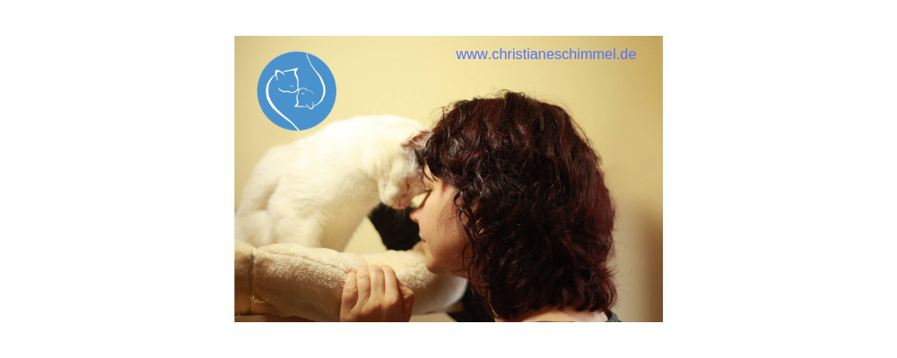 Wie die Tierkommunikation zu mir kam